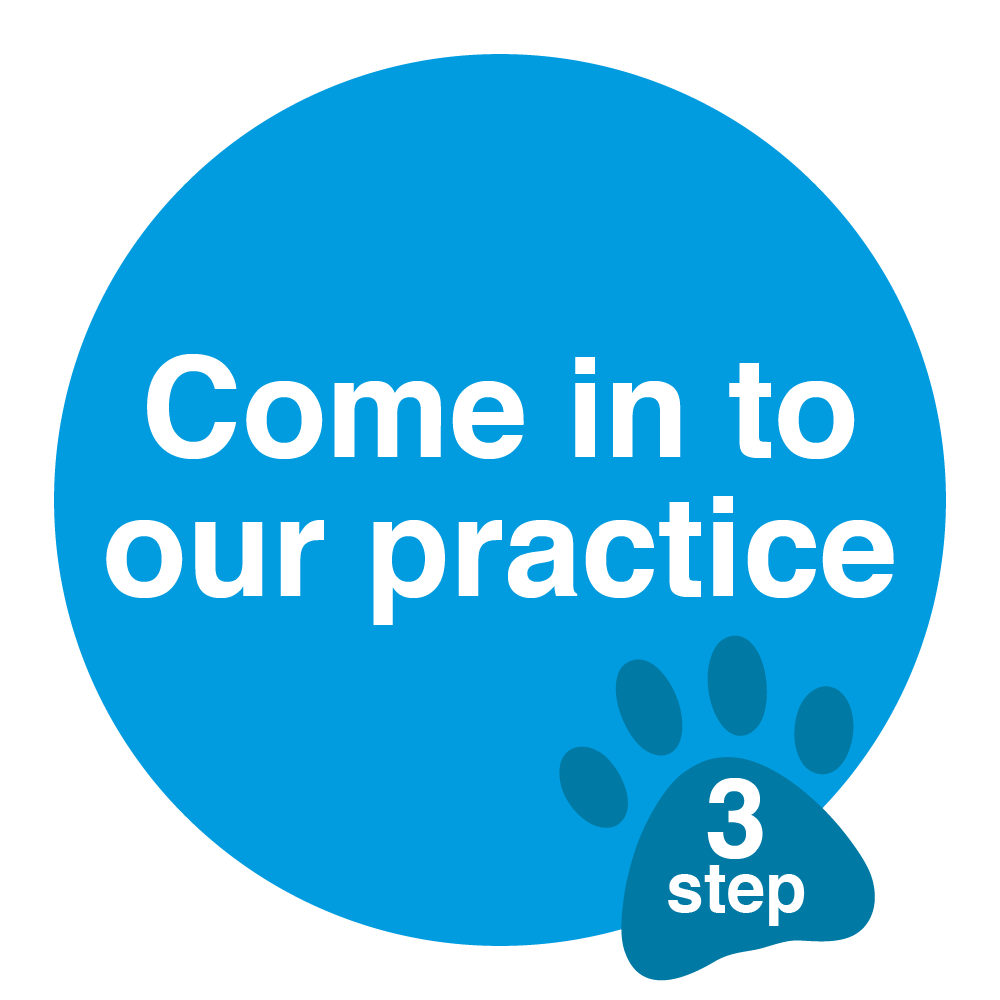 come into our practice sticker