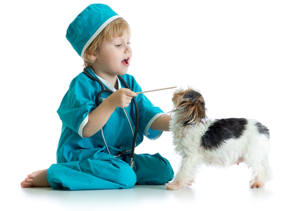 young child dressed as vet with small dog